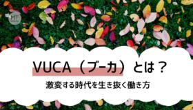 VUCA(ブーカ)の意味とは?|激変する時代を生き抜く組織のあり方・働き方